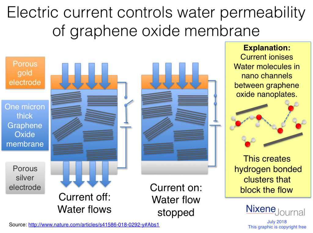 Water flow across a graphene oxide membrane can be controlled with an electric current